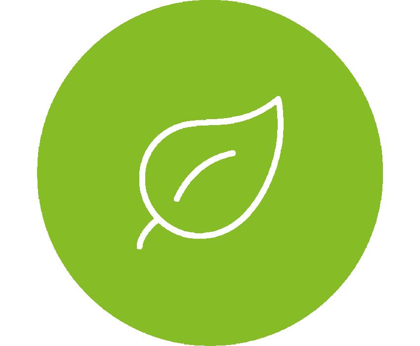 Blatt - Nachhaltigkeit