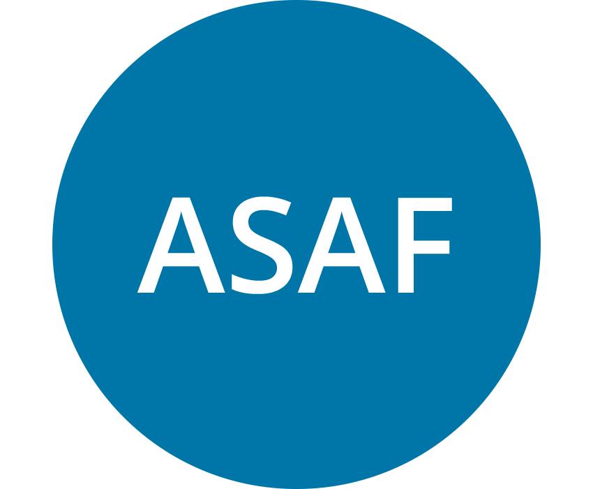 Accounting Standards Advisory Forum (ASAF)