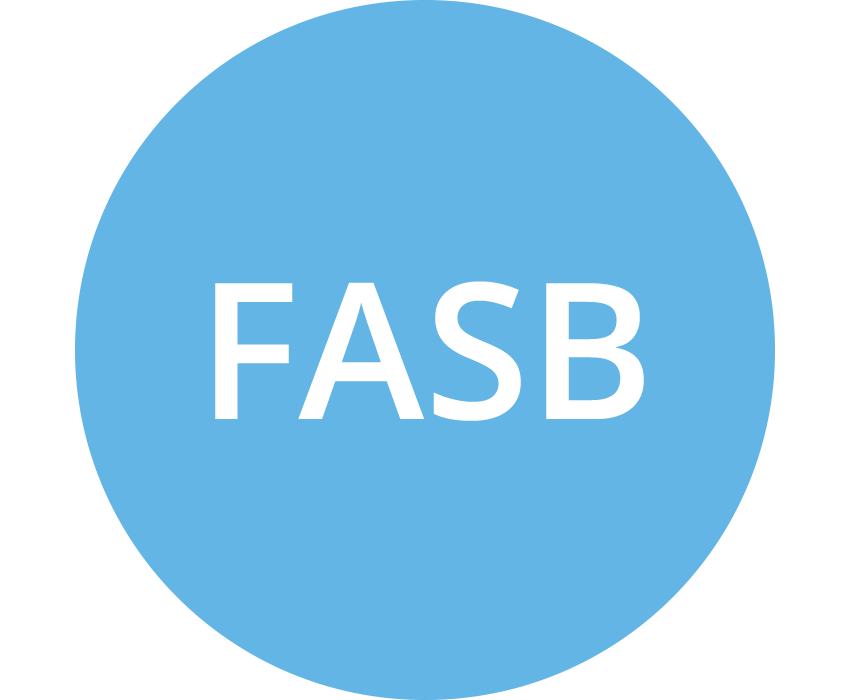 FASB (US Financial Accounting Standards Board) (lt blue)