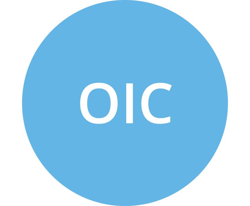 OIC (Italy Organismo Italiano di Contabilità) (lt blue)