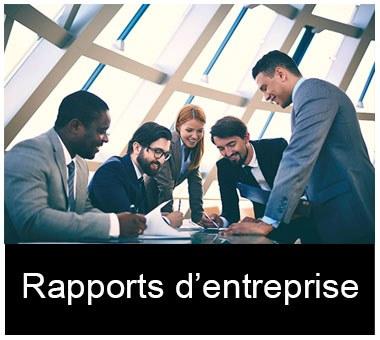 Rapports d'entreprise